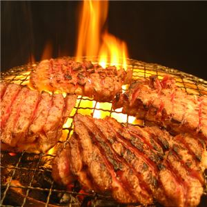 亀山社中 タレ漬け焼肉・BBQセット 華咲きハラミ&華咲きひとくち牛モモ 2.16kg - 拡大画像