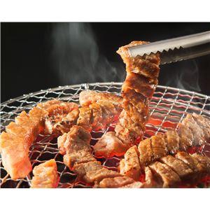 亀山社中 タレ漬け焼肉・BBQセット 華咲きハラミ&華咲きひとくち牛モモ 2.16kg h03