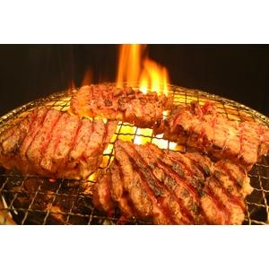【旧タイプにつき9月30日で販売終了】亀山社中 焼肉 計4kgセットB 【華咲きハラミ400g×4、華咲きカタロース400g×6 、ハサミ、レシピ付き】 - 拡大画像