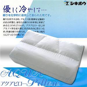 アイスボディネオ「北極枕」 - 拡大画像