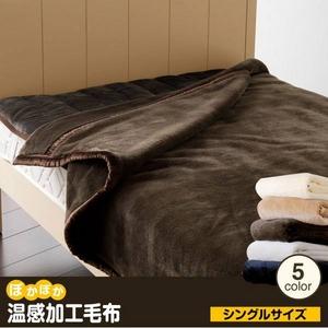 ぽかぽか温感加工毛布 シングル ブラウン - 拡大画像
