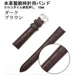 【腕時計用ベルト2本組】本革バンド クロコダイル柄型押し16mmダークブラウン