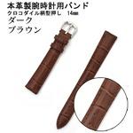 【腕時計用ベルト2本組】本革バンド クロコダイル柄型押し14mmダークブラウン