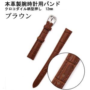 【腕時計用ベルト2本組】本革バンド クロコダイル柄型押し12mmブラウン - 拡大画像