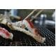 北海道『よくばり』BBQセット タラバ付き(4人前〜6人前) - 縮小画像1