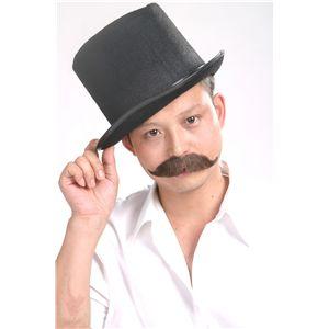 伯爵のヒゲ<紳士> 黒 - 拡大画像