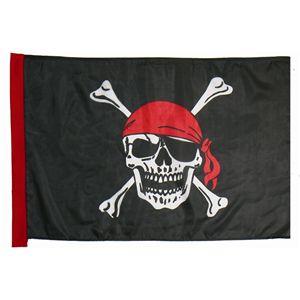 【コスプレ】 【ハロウィン】 Pirate Flag(海賊の旗) 4560320843528 - 拡大画像