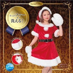 【クリスマスコスプレ 衣装】 キャンディサンタ・プレミアム - 拡大画像