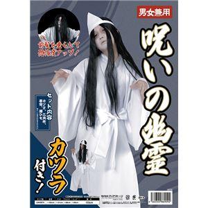 【コスプレ】 呪いの幽霊(ロングのカツラ付き)の画像