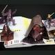ポップアップ絵本 スターウォーズリミテッドエディション500 日本語版 - 縮小画像4