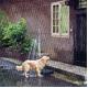 持ち運びお手軽シャワー<アウトドア・シャワー> - 縮小画像6