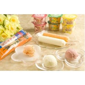 国産素材 美味しさいっぱいアイス 5種セット - 拡大画像