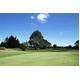 Roger King(ロジャーキング) ゴルフクラブ フェアウエイウッド RK-777 3番 【Rタイプ】 - 縮小画像3