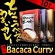 バカカカレー10食セット(ビーフ4、ポーク3、チキン3、計10食) - 縮小画像2