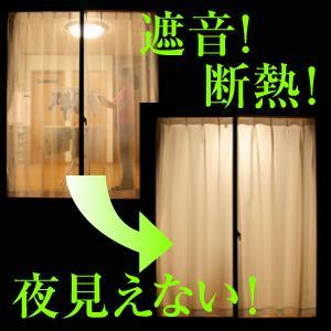 遮音・断熱カーテン2枚組 100×133 - 拡大画像
