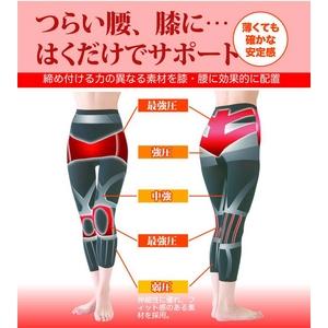 腰・膝らくらくスパッツ Lサイズ - 拡大画像