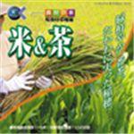 写真素材 マルク 食材の旅:1 米&茶(旬食材収穫編)