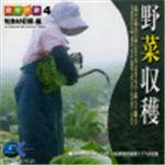 写真素材 マルク 食材の旅:4 野菜収穫(旬食材収穫編)