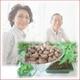 健康診断結果の開き直りは最悪の原因に!効率よく健康生活をサポートする本格健康食品姫マツタケ - 縮小画像2