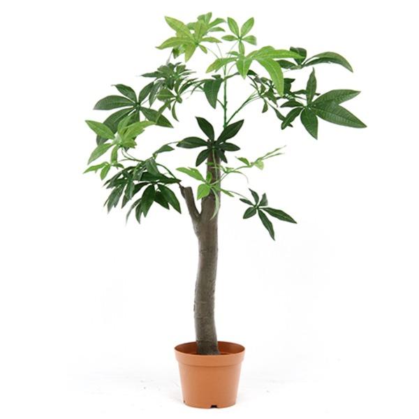 おしゃれなインテリアやガーデンに映える「観葉植物/フェイクグリーン 【パキラ 朴の木タイプ】 8号鉢対応 幅90cm 〔リビング ガーデニング〕」