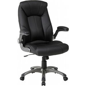 デスクチェア(椅子)/エグゼクティブチェアー 【デクシア】 昇降機能/可動式肘掛け/キャスター付き ブラック(黒)【組立品】 - 拡大画像