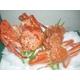 豪華!北海3大蟹セット - 縮小画像1