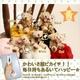 Rozybearロージーベア☆ハッピーラブくま&ポンポンストラップ(レッド) - 縮小画像3