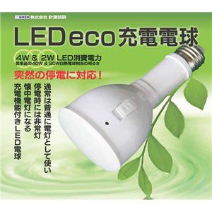 LED eco充電電球 ソケット付き - 拡大画像
