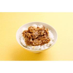 小どんぶりの素 80g  牛丼10食セット - 拡大画像
