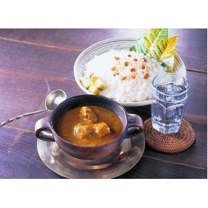 世界のカレーシリーズ・タヒチカレー 10食セット - 拡大画像