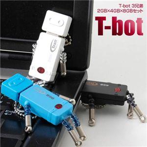 T-bot 3兄弟 2GB×4GB×8GBセット - 拡大画像