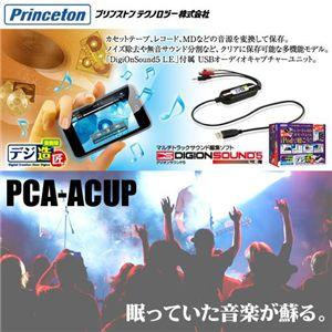 Princeton デジ造 音楽版 for Mac版 - 拡大画像
