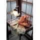 【箱入り】■日本製高級風呂敷■はいからもだん綿大ふろしき■寄裂古布(赤)■ - 縮小画像2