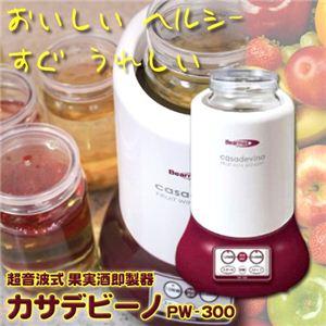 超音波式 果実酒即製器 カサデビーノ FW-300 - 拡大画像