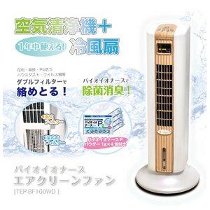 1年中使える!空気清浄機+冷風扇バイオイオナースエアクリーンファン TEP-BF160WD - 拡大画像