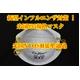 インフルエンザ、火山灰対策に!米国N95規格マスク 5枚入 (カップ型マスク) - 縮小画像1