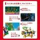 Wii New スーパーマリオブラザーズ - 縮小画像3