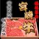 宮崎牛最高ランク(A-5)黒毛和牛 サーロイン 1キロ - 縮小画像1