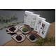 信州「春月」お多福豆4種セット - 縮小画像1