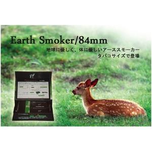 電子タバコ 【アーススモーカー84】 メンソールフィルター30本入り - 拡大画像