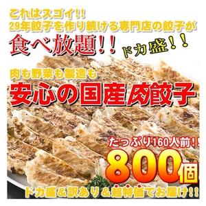 【ワケあり】安心の国産餃子800個!!160人前!! - 拡大画像