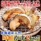 北海道産【天然】時鮭(ときしらず)カマ★2kg!! - 縮小画像1