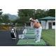 ゴルフ上達プログラム Enjoy Golf Lessons PART.2 - 縮小画像3