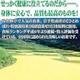 北海道の玄米使用『玄米まるごと玄煎粉』 - 縮小画像6