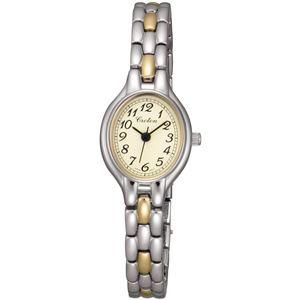 CROTON(クロトン)  腕時計 3針 オーバル RT-141L-2