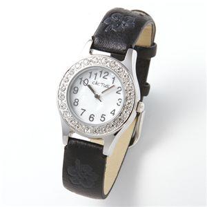 CACTUS(カクタス)キッズウォッチ(子供向け腕時計) CAC-34-L01 F - 拡大画像