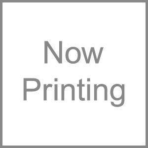 DAINICHI(ダイニチ) 加湿器フィルター 抗菌気化フィルター H060501 - 拡大画像
