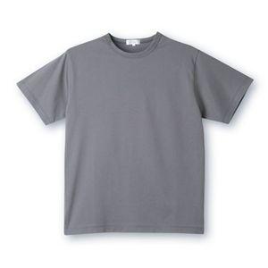 デオル クルーネックTシャツ グレー Lサイズ - 拡大画像