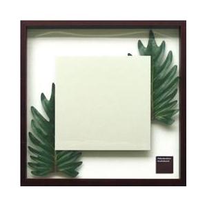 風景専門店あゆわら 《ミラー》Philodendron  cv. kookaburra(フィロデンドロン クッカバラ) - 拡大画像