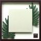 風景専門店あゆわら 《ミラー》Philodendron  cv. kookaburra(フィロデンドロン クッカバラ) - 縮小画像1